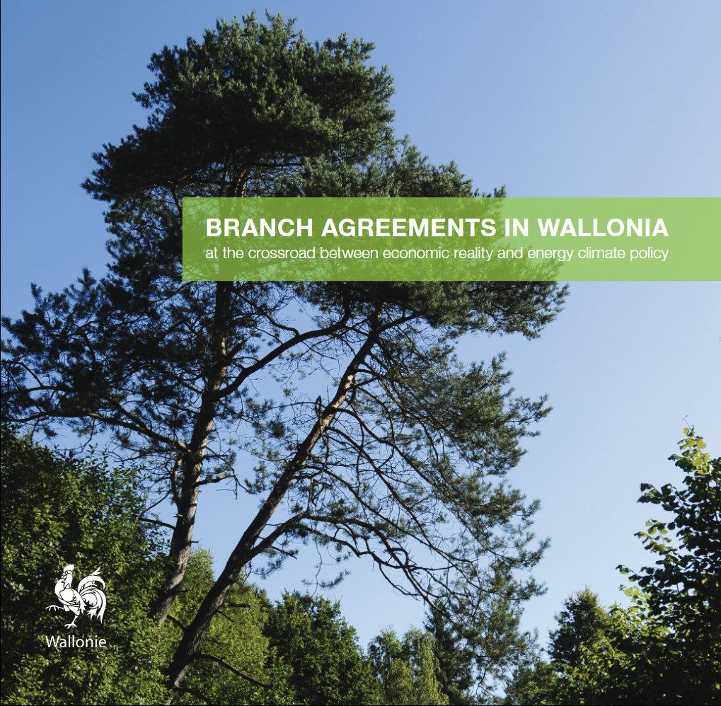 BRANCH AGREEMENTS IN WALLONIA at the crossroad between economic reality and energy climate policy